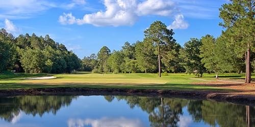 Blueberry Plantation Golf & Country Club