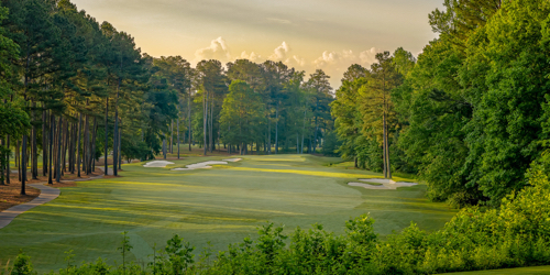 The Frog Golf Club Georgia golf packages