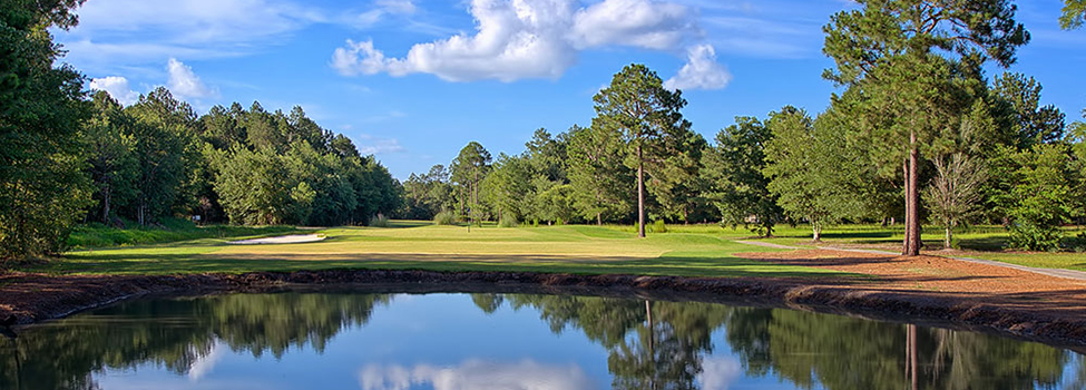 Blueberry Plantation Golf & Country Club